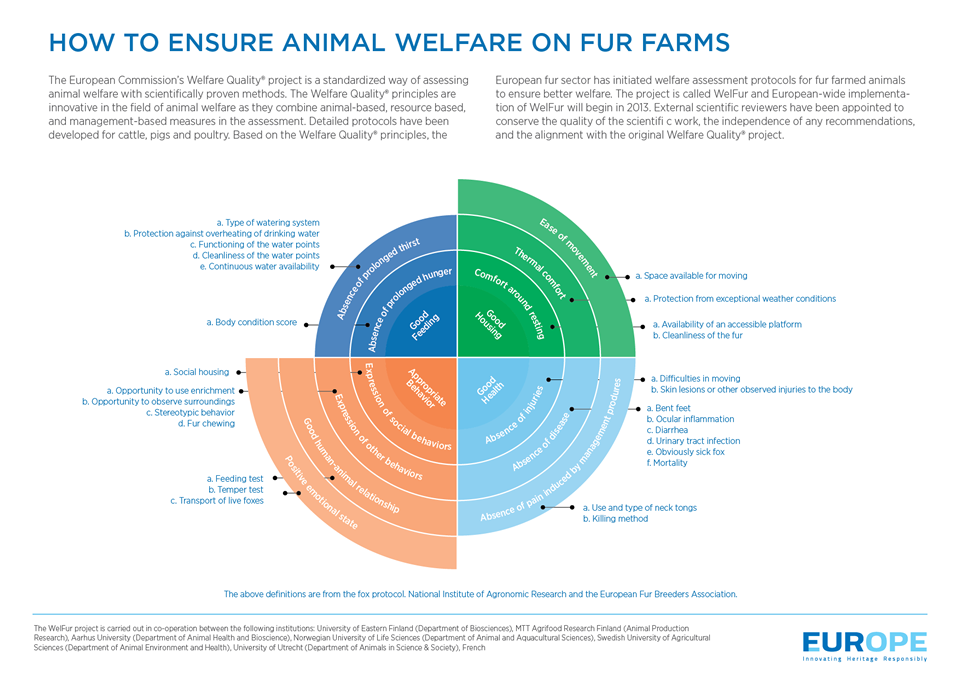 How to Ensure Animal Welfare on Fur Farms Infographic
